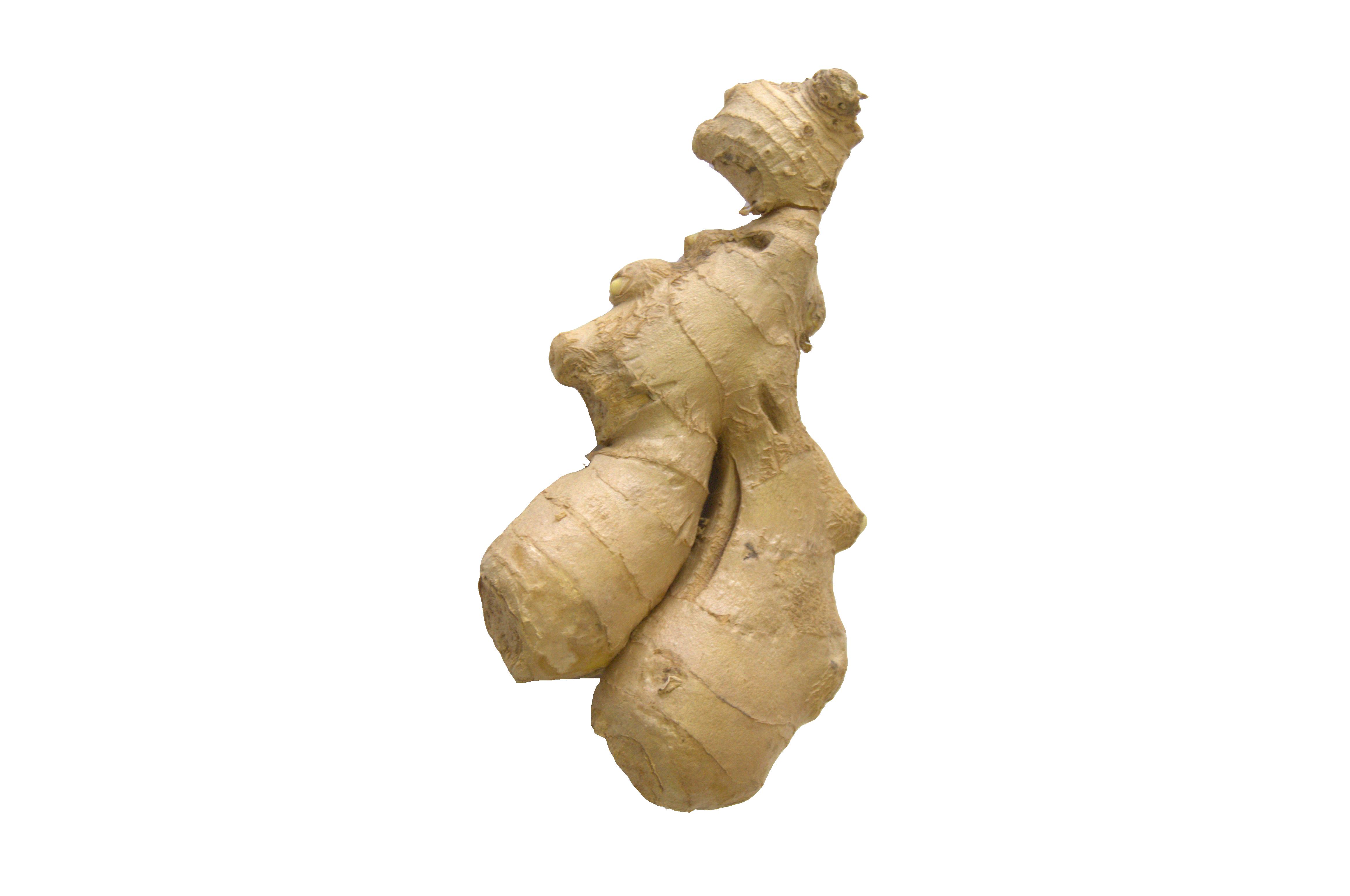 gember wortel /verpakt