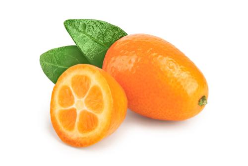 kumquat/kgr